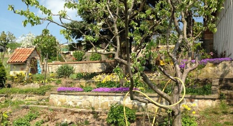 Unser Gartenbereich